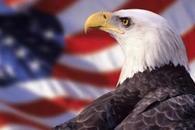 纵然加息、缩表,美国经济增速很难达到3%