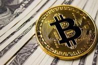 十天暴涨120% 比特币现金领涨数字货币反弹