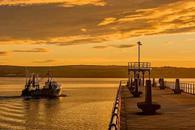 """利比亚原油产量或""""与日俱降"""",布油有望升破80美元"""