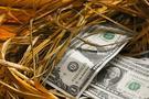 李生论金:美元短期继续回撤,黄金借机迎来加速