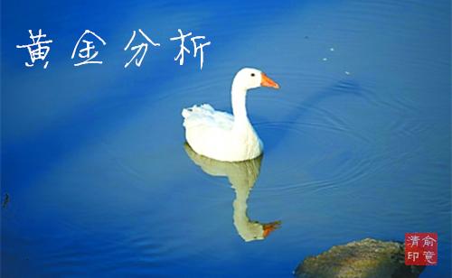 Img390102855_副本.jpg
