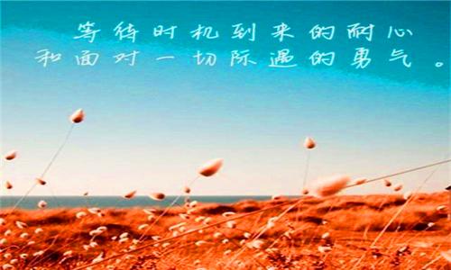 图片3_副本2.png