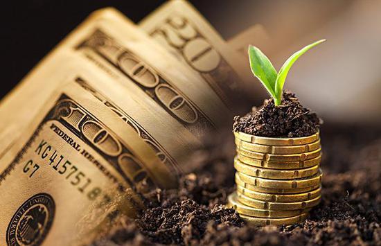 精准施策扶持小微企业 榕树贷款助力普惠金融